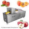 YL-II Apricot Cherry Coring Machine