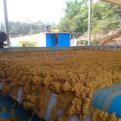 洗砂带式污水处理设备生产厂家定制 1
