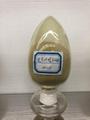 Ginkgo Biloba Extract 24-0 1