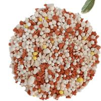 BB mixed Agricultural Fertilizer NPK Fertilizer 10-20-20 China manufactures fild