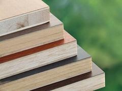 18mm Melamine Face and Wood Veneer Blockboard for Furniture Cabinet
