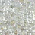 澳洲白贝马赛克深海白珍珠贝