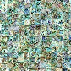 新西兰鲍鱼贝马赛克瓷砖