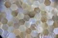 多边形黄海贝马赛克装饰家具面板 3