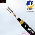 光纜廠家ADSS非金屬電力光纜ADSS光纜重量輕 3