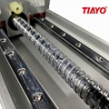 Tiayo Aluminum Profile Actuator High Precision Ball Screw Linear Guide Rail