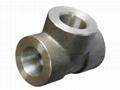 碳钢三通管件 3