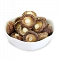Hot Selling China Shiitake Mushroom Dried Mushroom 1