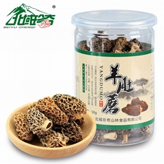 Chinese Morel Mushroom/ Dried Morel