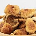 Nameko mushroom nameko shiitake