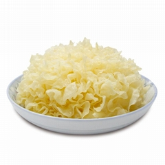 High quality organic tremella fuciformis silver ear mushroom dried white fungus