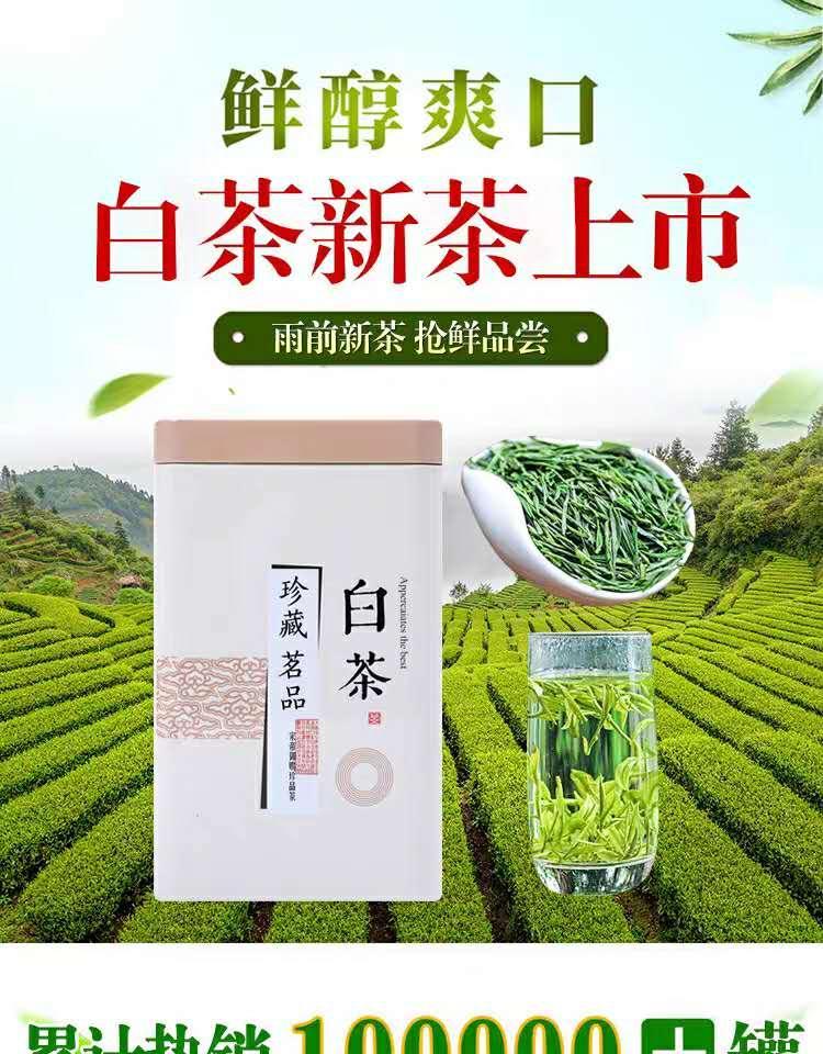 Authentic Anji white tea 1