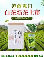 Authentic Anji white tea