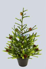ARTIFICIAL ANGEL PINE TREE WITH CONE POTTED 60CM