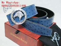 TOP AAA HIGH QUALITY STEFAO RICCI BELTS STEFAO RICCI belts wholesale