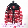 TOP 1:1 quality The north face down jacket newest The North Face outdoor jackets