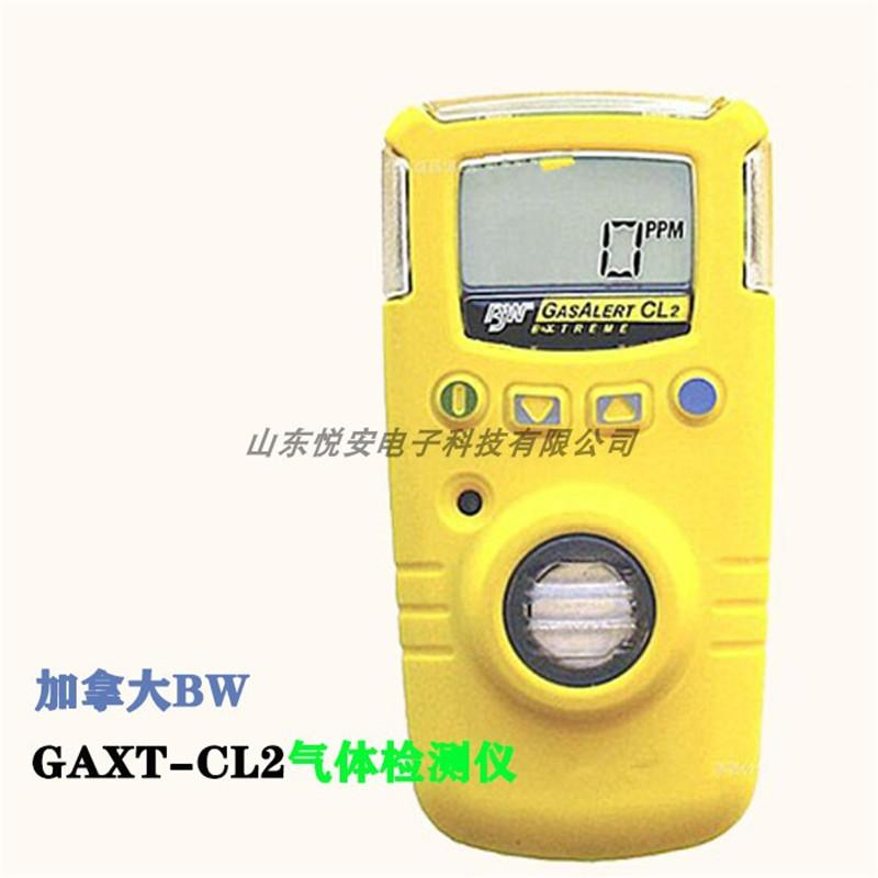 加拿大BW GAXT-H 便攜式硫化氫檢測儀 H2S檢測儀 硫化氫報警器  4