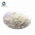 Zhengzhong Enamel Frit Inorganic White