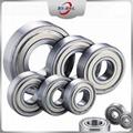 Deep Groove Ball Bearing 6000 6200 6300 Series