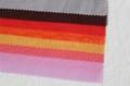 68D Crystal Organza Fabric 2