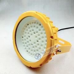 led防爆燈100W電廠酒廠專用100W防爆LED燈