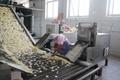 蝦片機 蝦片生產線 大連食品加