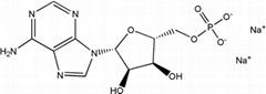 High quality Adenosine-5'-monophosphate disodium salt(AMP-Na2) CAS NO.4578-31-8