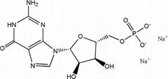 High quality Guanosine -5'-monophosphate disodium salt(GMP-Na2) CAS NO.5550-12-9