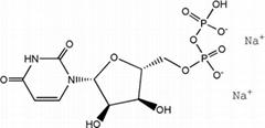 High quality Uridine-5'-diphosphate disodium salt (UDP-Na2)CAS NO.27821-45-0