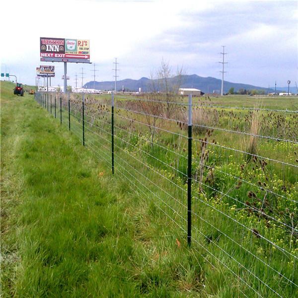 Field Fence 4