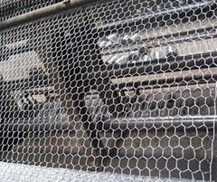 Hexagonal Wire Netting   Ga  anized Welded Mesh supplier
