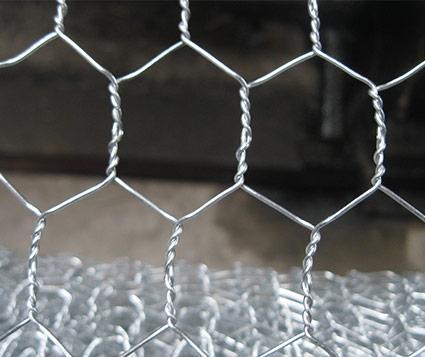 Hexagonal Wire Netting   Ga  anized Welded Mesh supplier  2