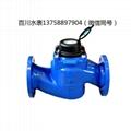 DN80螺翼式机械水表