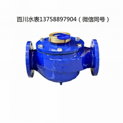 DN80半液封水表
