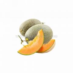Hybrid F1 green Skin Orange Flesh Sweet Melon Seedsc
