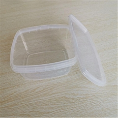Custom catering plastic packaging box