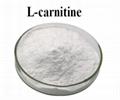 High Purity CAS 541-15-1 L-Carnitine Powder Amino Acid L-Carnitine Price Food
