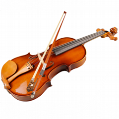 Popular student violino Jujube German 4/4 violin