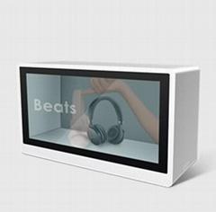 Transparent LCD Display