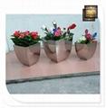 工藝品不鏽鋼花器花盆不鏽鋼異形花盆 4