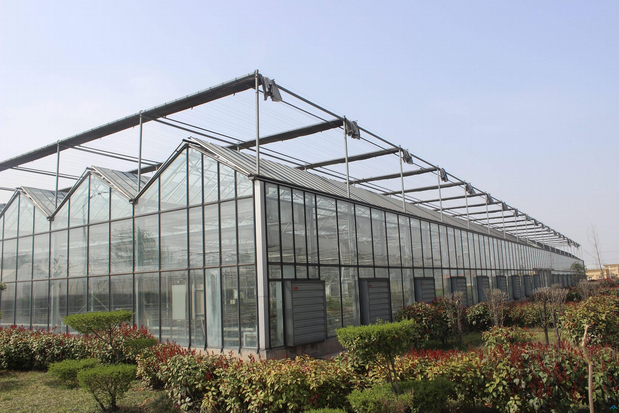 Industrial Hot Sale Ventilation Greenhouse Poultry Farm Wall Cooling Fan Exhaust 5