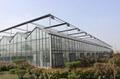 800mm 7650CFM Factory Farm Greenhouse Electric Ventilation Shutter Exhaust Fan 5