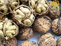Yunnan Walnut Inshell