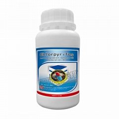 insecticide Chlorpyrifos