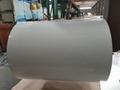 Flower design PPGI PPGL steel coil 5