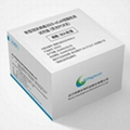 Covid-19  Acid Real-time PCR Test Kit for Rapid Detection