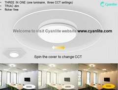 Cyanlite LED Transparent Ceiling Light