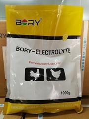 Electrolyte Premix