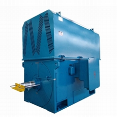 High Voltage Squirrel Cage Induction Motor