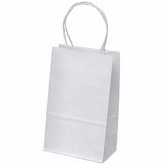 Gift Shopping Bags